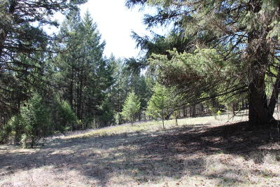 Lincoln County Residential Lots & Land For Sale: Nhn Rocky Road