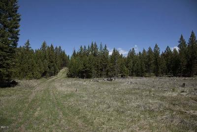 Lincoln County Residential Lots & Land For Sale: Parcel B Banks Draw Road