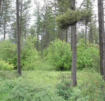 Flathead County Residential Lots & Land For Sale: Nhn Bierney Creek Trail