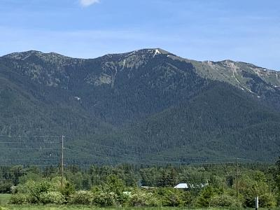 Kalispell Residential Lots & Land For Sale: Nhn Hwy 35