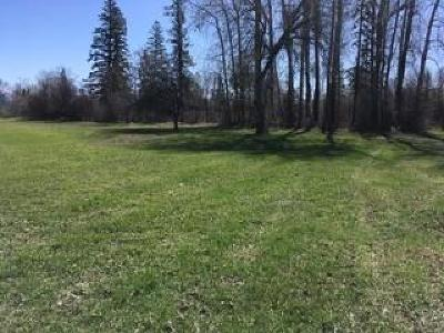 Kalispell Residential Lots & Land For Sale: 210 East Cottonwood Drive