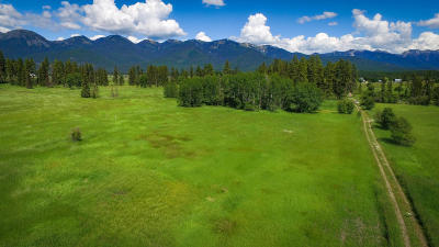Kalispell Residential Lots & Land For Sale: 910 Creston Hatchery Road