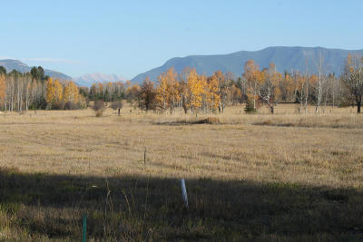Whitefish Residential Lots & Land Under Contract Taking Back-Up : 933 Preserve Parkway