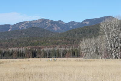Whitefish Residential Lots & Land For Sale: 953 Preserve Parkway