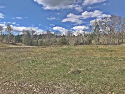 Lolo Residential Lots & Land Under Contract Taking Back-Up : 12458 Nature Court