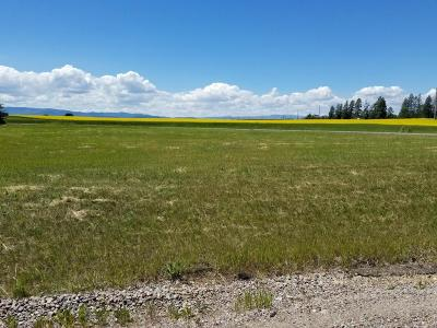 Kalispell Residential Lots & Land For Sale: Lot 12 Aeneas View Drive
