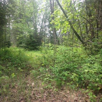 Kalispell Residential Lots & Land For Sale: 400 Bench Drive