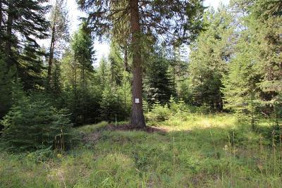 Sanders County Residential Lots & Land For Sale: Nhn Woodside Lane