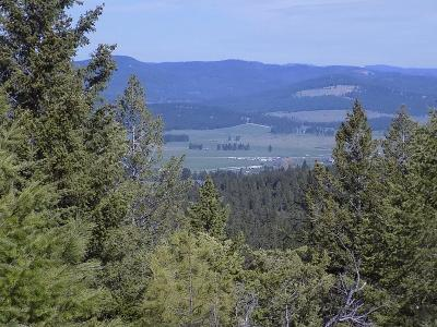 Flathead County Residential Lots & Land For Sale: 2010 Haywire Gulch