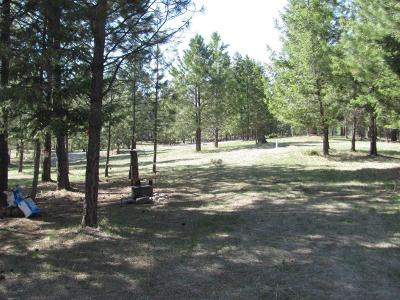 Lincoln County Residential Lots & Land For Sale: 413 Summit Trail
