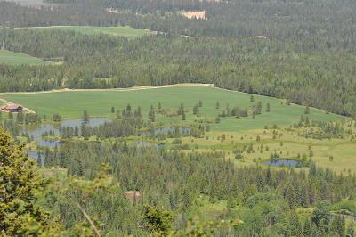 Alberton, Saint Regis, Huson, Heron, Noxon, Paradise, Superior, Thompson Falls, Trout Creek Residential Lots & Land For Sale: West Sanctuary Loop
