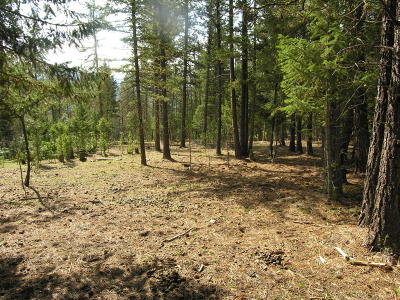 Missoula Residential Lots & Land For Sale: Nhn Whispering Pines Road
