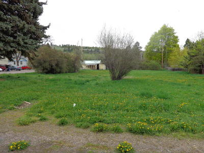 Lake County Residential Lots & Land For Sale: 612 15th Avenue East