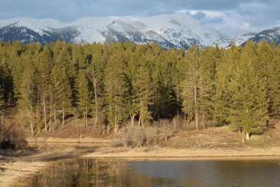 Flathead County Residential Lots & Land Under Contract Taking Back-Up : 6575 Mt. Hwy.35