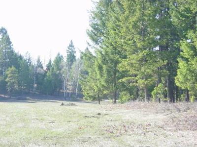 Kalispell Residential Lots & Land For Sale: Parcel 1 Kienas Road