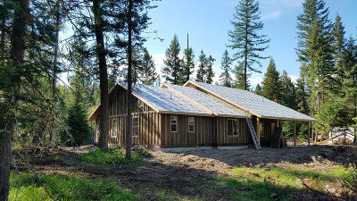 Flathead County Single Family Home For Sale: 430 Echo Chalet Drive