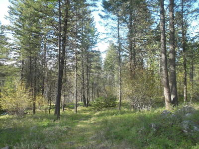 Flathead County Residential Lots & Land For Sale: 561 Ranch Road