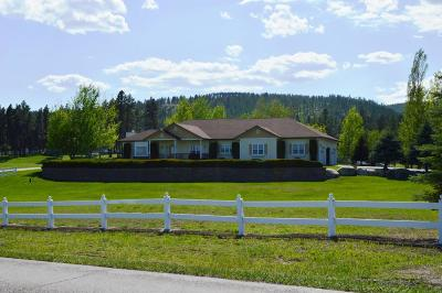 Kalispell Single Family Home For Sale: 580 West Valley Drive