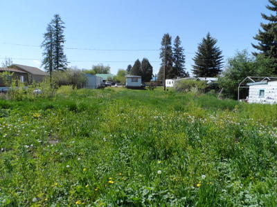 Ronan Residential Lots & Land For Sale: Nhn 4th Avenue South East
