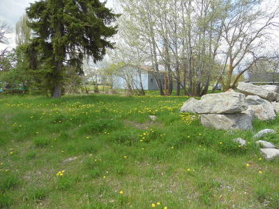 Lake County Residential Lots & Land For Sale: Nhn 5th Street East