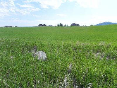 Kalispell Residential Lots & Land For Sale: 42 Morning View Way