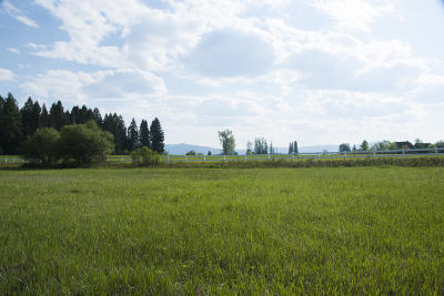 Flathead County Residential Lots & Land For Sale: 223 J P Road