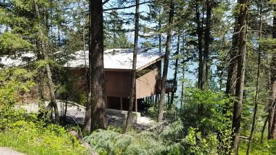 Flathead County Single Family Home For Sale: 869 Angel Point Road