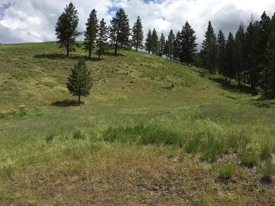 Ravalli County Residential Lots & Land For Sale: A2 Camp Creek Road