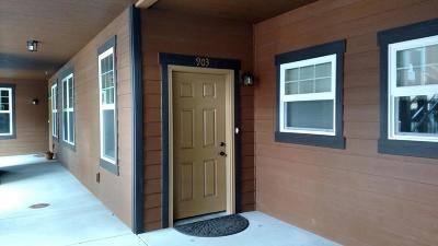 Missoula Single Family Home For Sale: 4100 Mullan Road