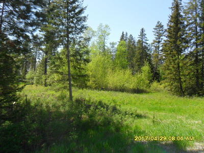 Columbia Falls Residential Lots & Land For Sale: Nhn Elk Park Road