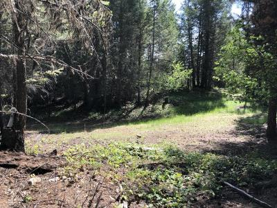 Lincoln County Residential Lots & Land For Sale: Lot #1 Elk Trail