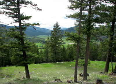 Flathead County Residential Lots & Land For Sale: Nhn White Tail Ridge