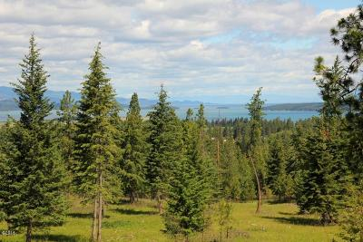 Polson MT Residential Lots & Land For Sale: $197,000