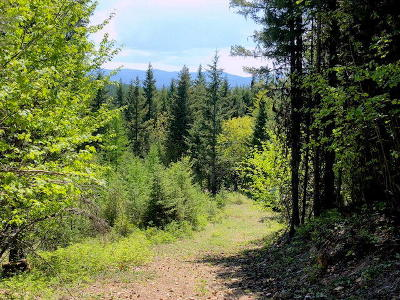 Lincoln County Residential Lots & Land For Sale: 181 Enda Mountain Road
