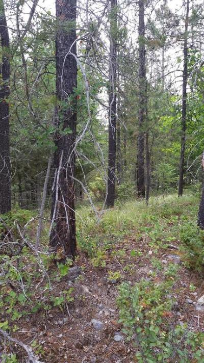 Whitefish Residential Lots & Land Under Contract Taking Back-Up : Nhn State Park Road