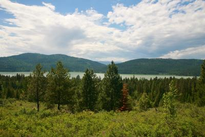 Whitefish Residential Lots & Land For Sale: 2505 East Lakeshore Drive