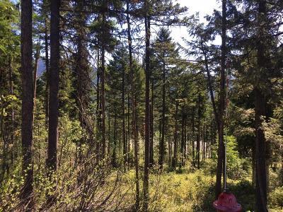 Whitefish Residential Lots & Land For Sale: 115 Ridge Run Drive