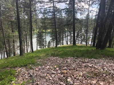 Kalispell Residential Lots & Land For Sale: 43 Bass Lake Drive