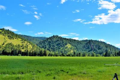 Arlee MT Residential Lots & Land For Sale: $96,000