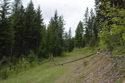 Lincoln County Residential Lots & Land For Sale: Nhn Houghton Creek Road