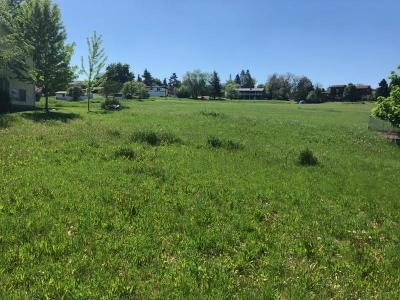 Lake County Residential Lots & Land For Sale: Nhn C Avenue