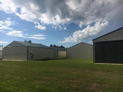 Bigfork Residential Lots & Land For Sale: 305 Ferndale Drive