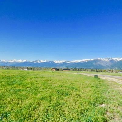 Stevensville Residential Lots & Land For Sale: 437 Vista View Loop