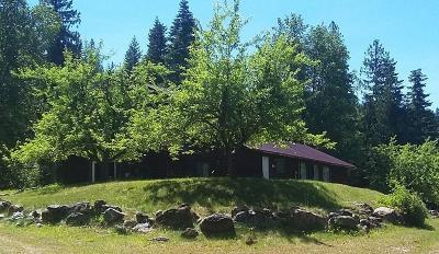 Bigfork Single Family Home For Sale: 30213 Chintzey Lane