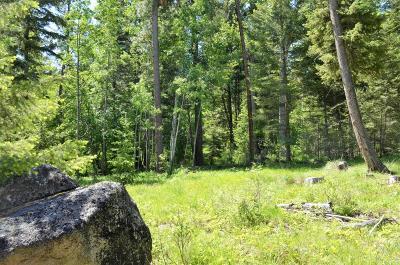 Ravalli County Residential Lots & Land For Sale: Nhn Alder Springs Lane