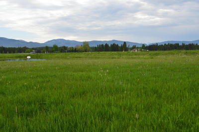 Whitefish Residential Lots & Land Under Contract Taking Back-Up : 4961 Flatwater Drive