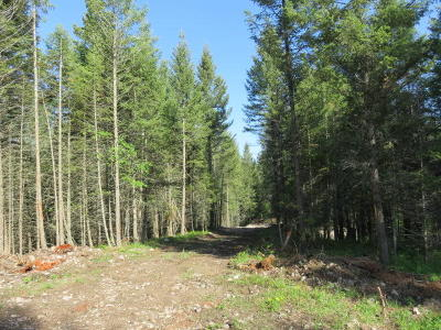 Kalispell Residential Lots & Land For Sale: 28 Wild Turkey Lane