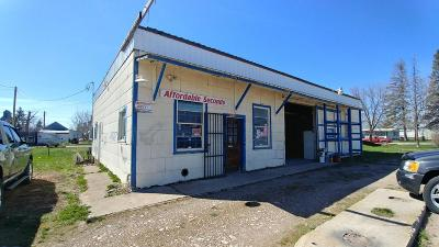 Lake County Commercial For Sale: 42141 3rd Avenue East
