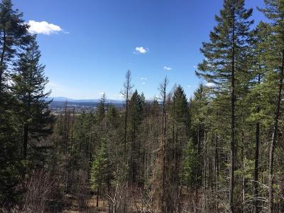 Whitefish Residential Lots & Land For Sale: 825 Highland Drive