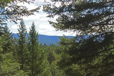 Lincoln County Residential Lots & Land Under Contract Taking Back-Up : Nhn Glen Lake Road